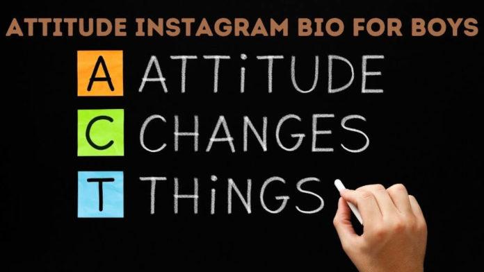 Attitude Instagram Bio for Boys